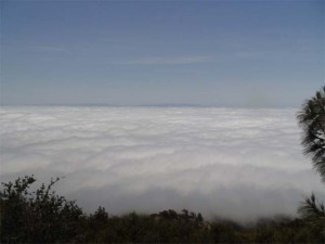View from the summit of Mt. Diablo